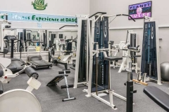 DASC fitness suite, Disley