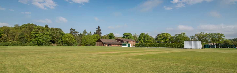 DASC cricket